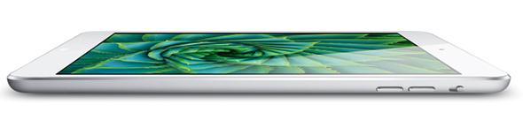 iPad Mini Ecran